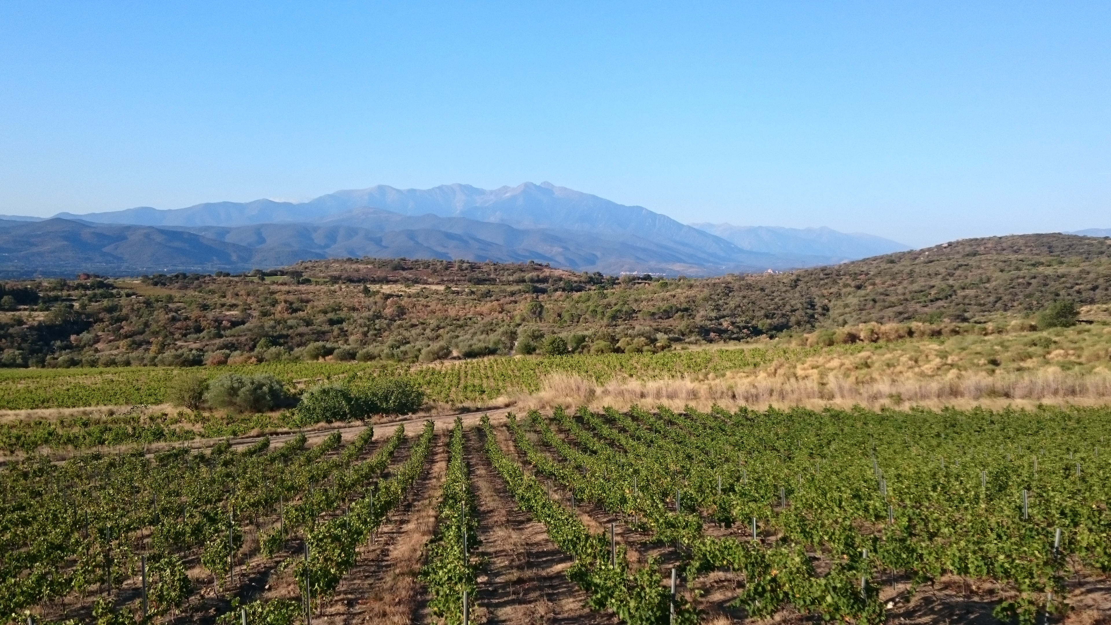 Introduction of the Eastern Pyrenees